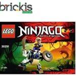LEGO Ninjago 30291 anacondrai Batlle Mech